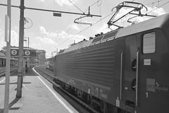milano area settembre 2015 #46 (train_spotting) Tags: siemens lenord kraussmaffei milanolambrate nordcargo es64f4 fnmcargo nikond7100 class189vi e1894043inc esf464404