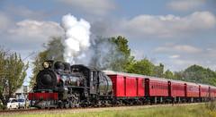 "Ab 608 ""Passchendaele"" IV (Dina275_) Tags: new train ab steam zealand hdr 608 passchendaele"