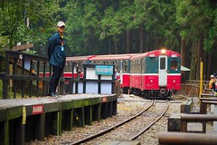 2015-10-25 11.51.24 (pang yu liu) Tags: travel train 10 oct 阿里山 旅遊 alishan 2015 火車 十月