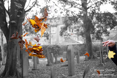20151031_105137-Edit (mr_malcolm.fletcher1) Tags: cemetery graveyard location scarborough northyorkshire deanroad