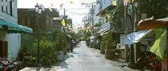 _MG_1217 (playwhyyza) Tags: travel canon purple bangkok thai  600d    kissx5