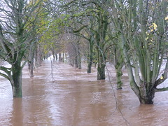 The Carlisle Floods 2015 (ambo333) Tags: uk england storm rain weather flooding flood cumbria desmond eden carlisle rainfall floods rivereden carlisleflood carlislecumbria carlislefloods carlislecitycouncil cumbriafloods cumbriaflooding cumbriaflood stormdesmond englandflooding ukflooding floods2015 cumbriacrack