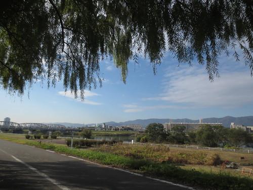 桂川サイクリングロード