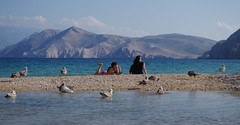 Sunbathing (shpongleri) Tags: girls girl seagulls seagull sea krk baka prvi velebit island mountain rock beach sunbathing redhead red blue jadran kvarner