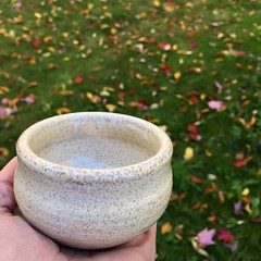 Fall leaves make a gorgeous backdrop. (Ceramic Design by Cherie) Tags: ceramicdesignbycherie cdbc cheriegiampietro leaves fall white speckled pottery handmade wheelthrown ceramics cup ceramic