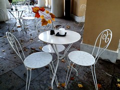 Chair Absence Table Empty Flower Group Of Objects Restaurant Day Large Group Of Objects Modern Freshness No People Botany Autumn Colors (ph4mt) Tags: chair absence table empty flower groupofobjects restaurant day largegroupofobjects modern freshness nopeople botany autumncolors