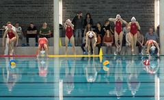 2A150038 (roel.ubels) Tags: uzsc zpb hl productions waterpolo eredivisie utrecht krommerijn 2016 sport topsport