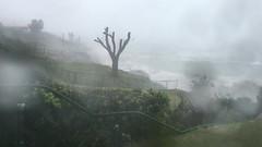 Hurricane Nicole (Bill Boaden) Tags: bermuda spanishpoint pembrokeparish hurricane nicole