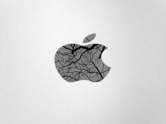 APPLE-TREE I Almafa (krisztian brego) Tags: olympus omd em10 mzuiko digital 25mm f18 budapest apple mac mini tree branches autumn fall