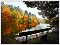 The lonely bench (almresi1) Tags: bank spiegelung see lake herbst autumn wald wood eisenbachsee welzheim