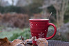 wintry morning (=Mirjam=) Tags: nikond750 odc tea cup winter frost leaves red bokeh background garden december 2016