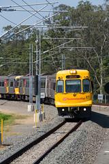 New Up Main (jamesmp) Tags: queenslandrail qr walkersltd asea electricmultipleunit emu electrictrain suburbantrain petrie queensland australia