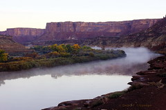Twilight on the Green (Chief Bwana) Tags: ut canyonlands canyonlandsnationalpark nationalparks whiterim greenriver fallcolors dawn sunrise psa104 chiefbwana