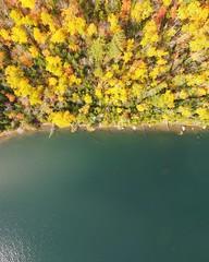 Adirondack fall colors October 2016 (stillwellmike) Tags: phantom quad adirondack color trees above dji drone