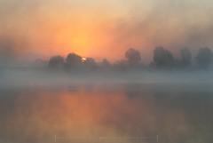 Beautiful morning (Mirek Pruchnicki) Tags: radymno zek fog lake landscape misty morning outdor scenery softlight summer sun sunrise water województwopodkarpackie polska