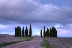 Toscana 12 Noviembre 2016 (carlosjarnes) Tags: toscana aterdecer
