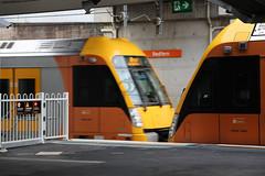 Waratah Trains passing at Redfern station (Photography Perspectiv) Tags: train sydneytrains railway railroad sydney transport emu waratah passenger commuter aset suburban