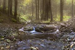 Arroyo de Pedrosillo (Cotos) (Víctor.M.Chacón) Tags: dmcfz1000 fz1000 víctormchacón cotos puertodecotos arroyodelpedrosillo pedrosillo paisaje rio naturaleza