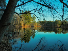 Mine Falls Park - Nashua River 9 (dennisgg2002) Tags: nashua river nh new hampshire autumn fall england