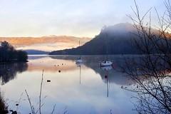 Misty Luss (Anne Young2014) Tags: lochlomondnationalpark misty winter yachts boats loch scotland lochlomond lomond luss