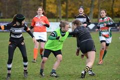 DSC_8891 (mbreevoort) Tags: rfchaarlem rugby rcthedukes brcbreda dioklrc thepickwickplayersdrc hookers goudarfc