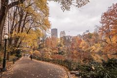 Autumn Ease (JMS2) Tags: centralpark newyorkcity manhattan autumn park path nature cityscape