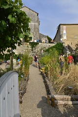 L'alle du jardin de l'glise (Flikkersteph -4,000,000 views ,thank you!) Tags: architecture religious romane medieval catholicchurch outdoor garden rustic greenery summer holiday people clearsky charente village dignac france