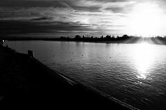 The Estuary (Chris Goodacre) Tags: olympusstylus1 monochrome kingslynn chrisg35mm dxofilmpack