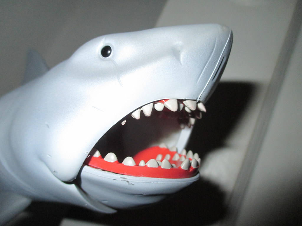 Shark Boat Toy : The world s most recently posted photos of jaws and orca