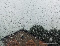 Pioggia 16-9-15 (Andrea Antico) Tags: glass rain rainyday samsung drop galaxy pioggia lombardia vetro lomellina goccia sii parabrezza