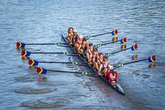 IMG_2980October 04, 2015 (Pittsford Crew) Tags: crew rowing regatta geneseeriver headofthegenesee pittsfordcrew