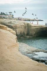 299 (nelson.kimberli) Tags: ocean california travel sunset sandiego sunsetcliffs cliffdivers daredevils luscombspoint