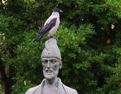 Hooded crow on the head of a Georgian poet (Elisa1880) Tags: italy rome roma italia villa poet georgian crow italie borghese dichter bonte hooded kraai shota corvus cornix rustaveli georgische