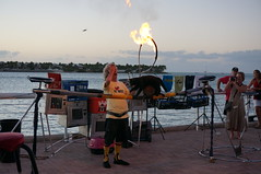 certifiable (rovingmagpie) Tags: cats french fire jumping florida tightrope keywest catman mallorysquare dominiquelefort westinpier sfi2015 dominiquethecatman