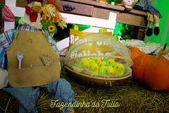 FAZENDINHA DO TULIO 2015 FINAL-21 (agencia2erres) Tags: aniversario 1 infantil festa ano fazenda fazendinha