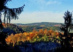 Autumn Colours in Saxon Switzerland - Kirnitzschtal (Andr-DD) Tags: autumn trees tree fall leaves forest germany deutschland leaf scenery view saxony laub herbst sachsen landschaft wald bume baum schsischeschweiz laubfrbung saxonswitzerland osterzgebirge sebnitz kirnitzschtal groserteichstein eastoremountains