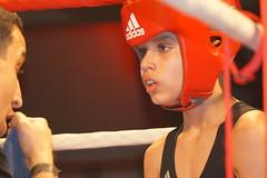 DSC05407 (Mustafa Harmanci) Tags: youth denmark fight young martialarts battle boxing combat danmark champions champ ringside boksning kampsport