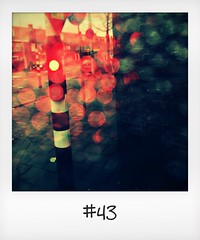 """#DailyPolaroid of 10-11-15 #43 • <a style=""""font-size:0.8em;"""" href=""""http://www.flickr.com/photos/47939785@N05/23422203109/"""" target=""""_blank"""">View on Flickr</a>"""