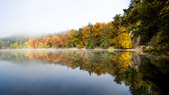 Bergsee Bad Sckingen (Nelus Photography) Tags: outdoor wald forest schwarzwald blackforest deutschland germany herbst fall spiegelung reflection fog nebel orange red yellow gelb rot bergsee see lake trees bume baum tree