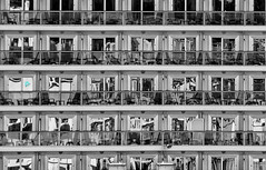 In Bw because i love it !!! City reflections on Britannia windows cruiseship .. (MiguelSantosi) Tags: bw blackandwhite blackandwhitephotography blackandwhitephoto bwlovers bwphotography blackandwhitelovers bwphoto bwshot blackandwhiteshot bnwsaomiguelazores bnw bnwcaptures bwshots blackandwhiteshots blackwhite bnwsociety blackandwhitecaptures blackandwhitephotograhy blackandwhitephotogaphy fotografiapretoebranco pretoebranco pretoebrancofotografia brittania cruise cruises cruizes cruize cruizeiro cruseiro cruiseship refelctions windows windowstothesoul