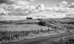Harwood . (wayman2011) Tags: canon50d lightroom wayman2011 bwlandscapes mono roads fences farms pennines dales teesdale harwood countydurham uk