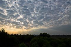 Sunrise at Sitamata WLS (Ram Sundararaman) Tags: sunrise sitamata sanctuary cloud trees godrays landscape