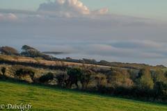 Mer de nuage la hague-17 (Lorimier david) Tags: mer de nuage la hague 251016 normandie normandy nature landscape cloud sea