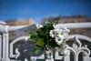 Haurralde - Camino de flores (Jonmant) Tags: novia wedding boda violencia género marcha protesta donosti jonmant fotografía manifestación haurralde ong mujer libre feminismo euskadi vestido blanco ramo flores flower bride love amor