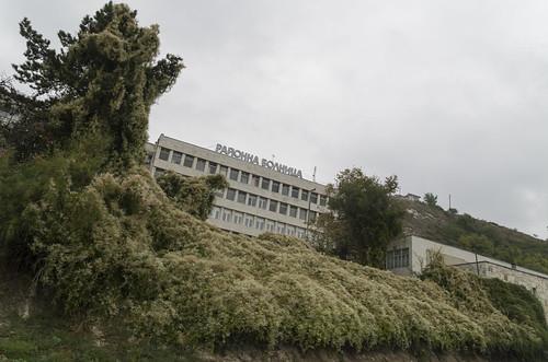 Hospital, 07.10.2014.