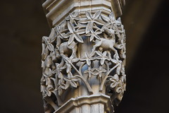Claustre de la Seu Vella de Lleida (esta_ahi) Tags: lleida claustre claustro cloister seuvella ri510000156 catedral gtic gtico segri lrida spain espaa  capitel