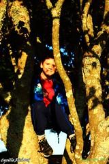 Belvdre de Ste Anne- dans l'arbre... (11) (richardcyrille) Tags: bretagne finistre goulet brest