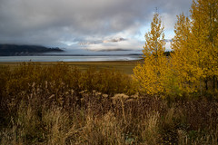 Grand Teton National Park (nebulous 1) Tags: grandtetonnationalpark grandtetonnp gtnp wyoming clouds lakejackson landscape nature water trees grass nikon nebulous1 glene h