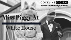 Miss Piggy at the White House (Cocklins Digital) Tags: dcvideoproduction videoproductionservice washingtonvideoproduction commercialvideoproduction corporatevideoproduction documentaryvideoproduction filmproduction filmmaking multicameravideoproduction mediaproduction videoeditingservice