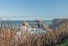 67Jovi-20161215-0153.jpg (67JOVI) Tags: arni arnía cantabria costaquebrada liencres playa